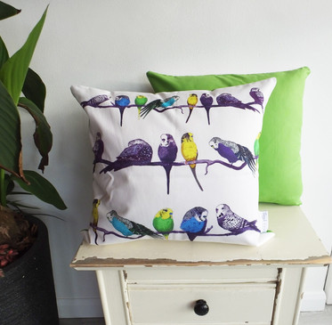 Green Budgie Cushion 50cm x 50cm