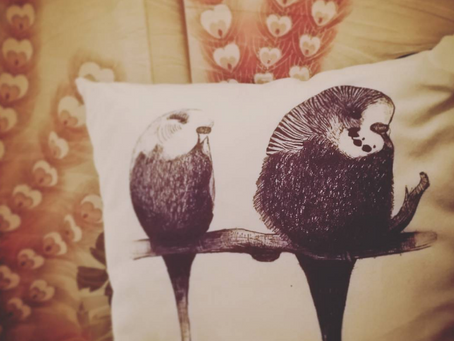 Great Reaction to Budgie Cushions by Jenny K Home! Customer Reviews & Testmonials