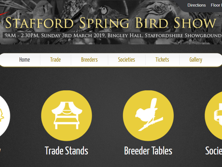 Jenny K Home to Attend Stafford Spring Bird Show with Budgie, Canary and Parakeet Designs