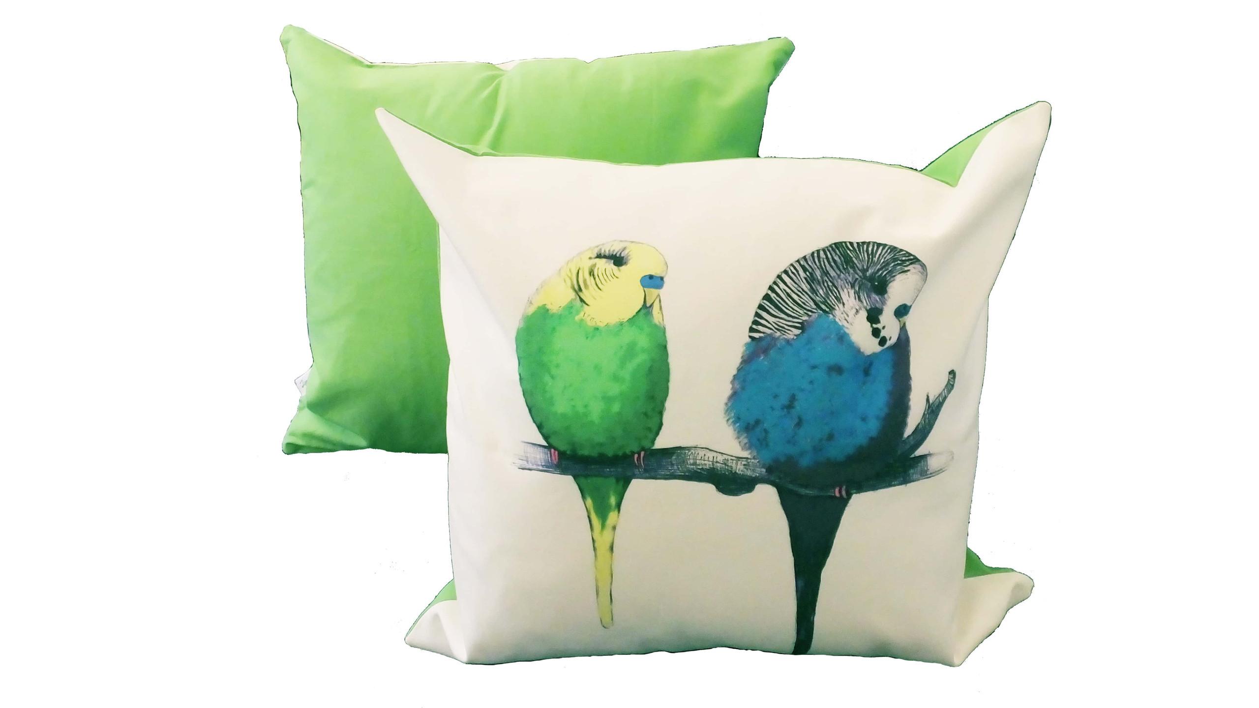 Jenny K Home - Budgie Bird Cushion We're too cute Pattern Multicolour Green Back 1-min