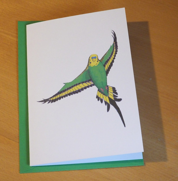 Flying Green Budgie Parrot Card