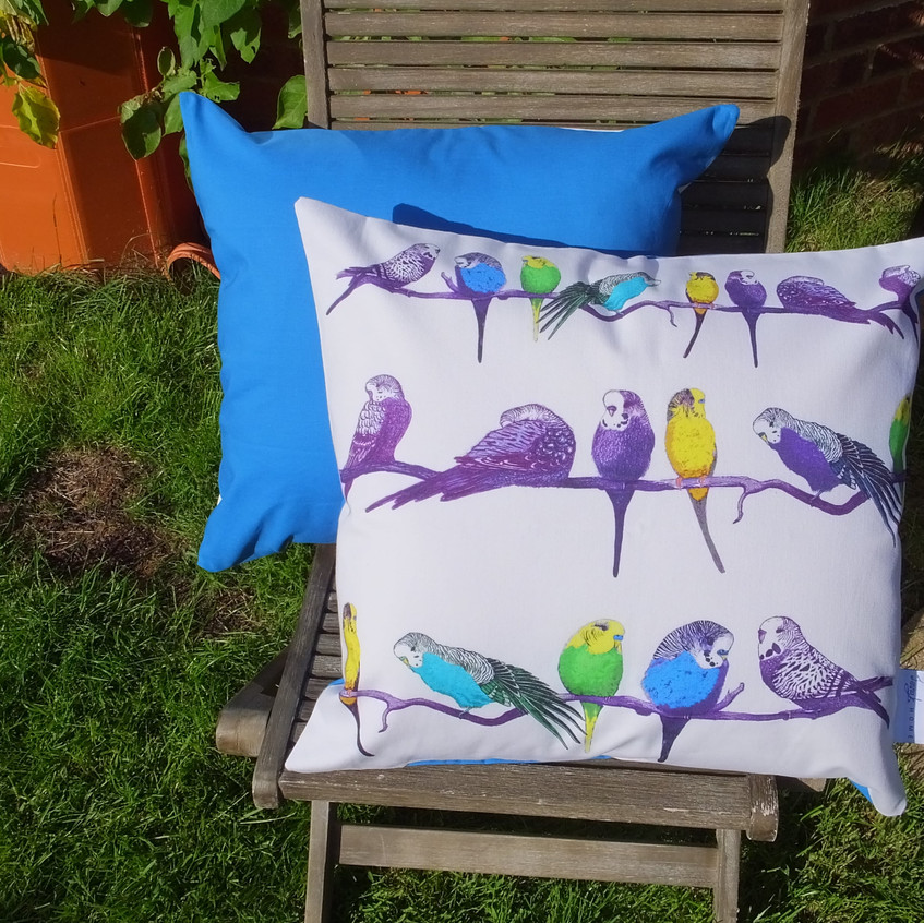 Jenny K Home bright blue budgie parrot cushion 2