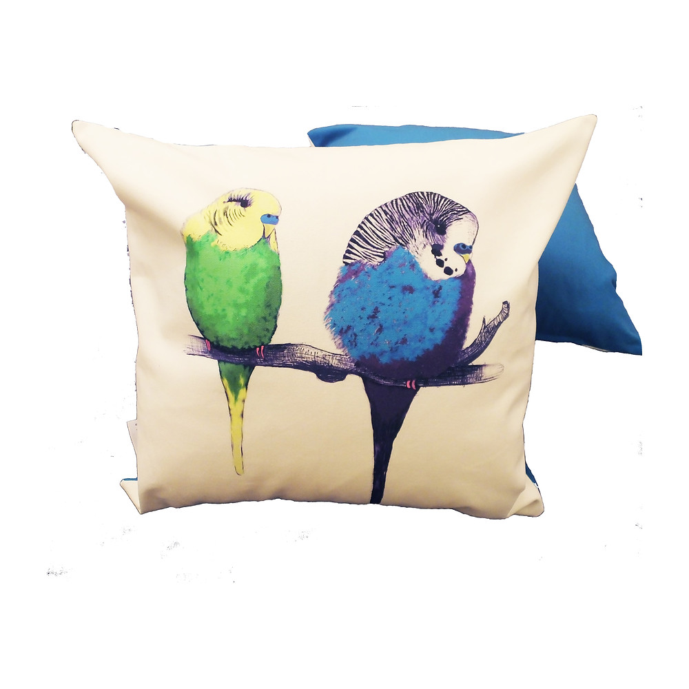 We're Too Cute colour budgie bird cushion throw pillow | CUSHION COVER ONLY | bright mid blue | 48cm x 48cm (fits 50cm x 50cm filler) from Jenny K Home