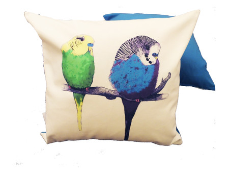 Bigger and Brighter! New 48cm x 48cm Colourful Jenny K Home Budgie Cushion