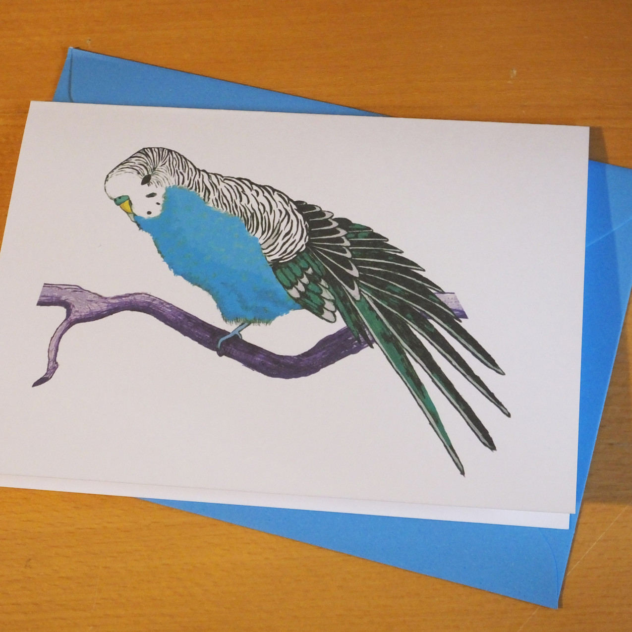 Jenny K Home Budgie Card Blue Stretch 3.