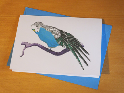 Blue Budgie Card 'Stretch'