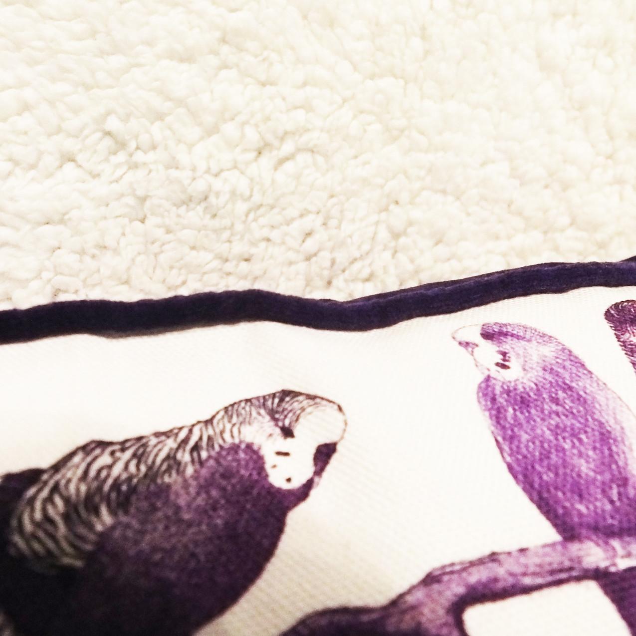 Jenny K Home Aviary Group Budgie Bird Cushion Purple Velvet Piping Cotton 3