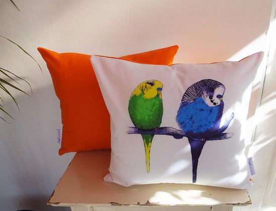 Orange Budgies Cushion