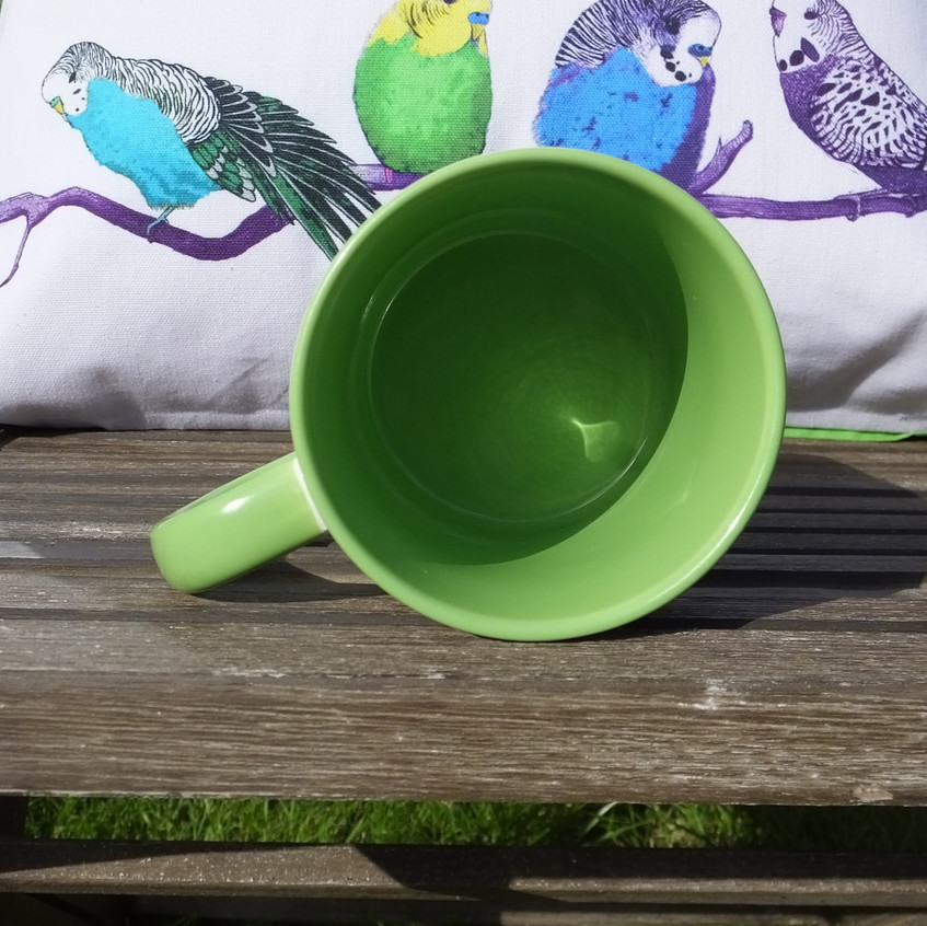 Jenny K Home Budgie Mugs Colourful Green Summer 13-min