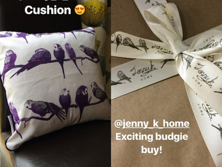 Lovely Instagram Review of Jenny K Home budgie cushion from @pippythe_budgie_bird