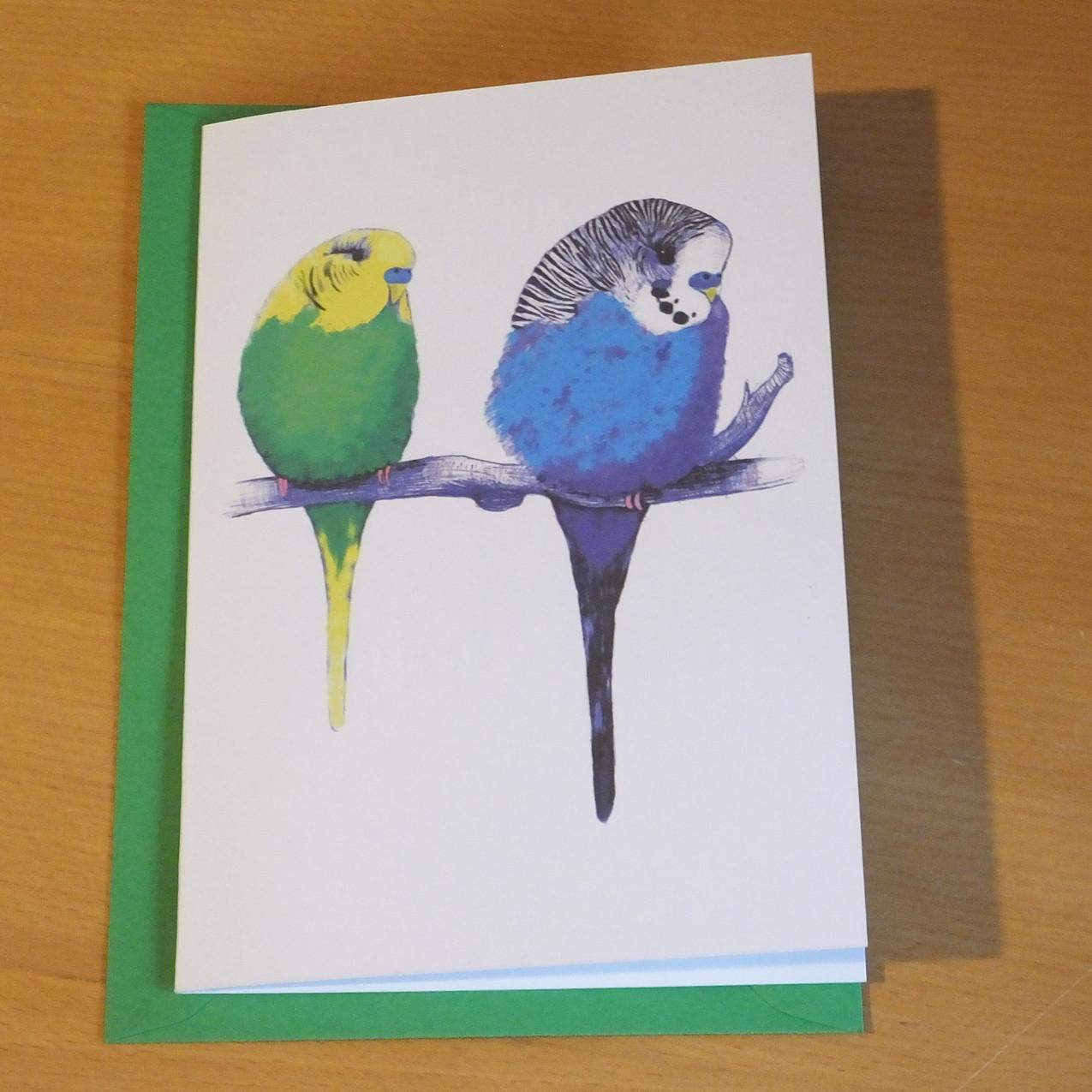 Jenny K Home Budgie Card Green Too Cute