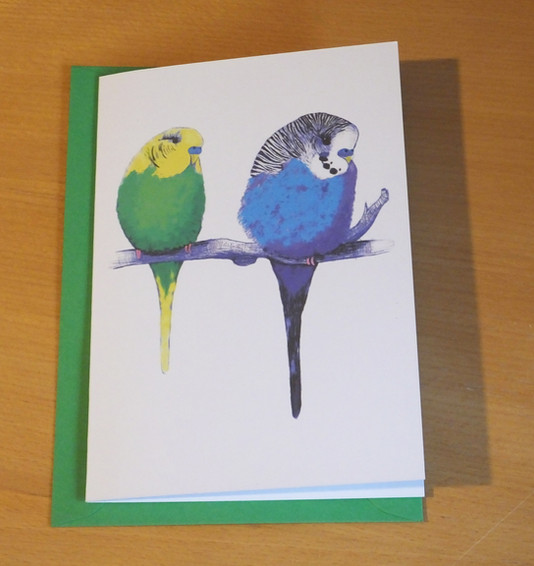 We're Too Cute Parakeets Card
