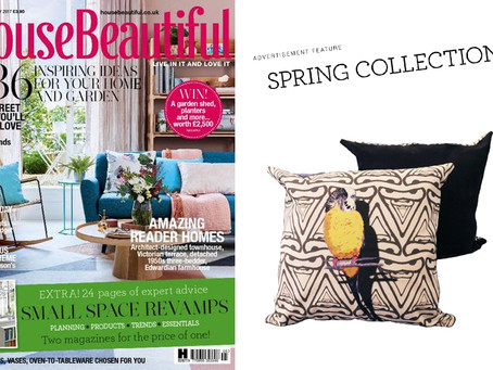 Jenny K Home Budgie Cushion Featured in House Beautiful Magazine May 2017