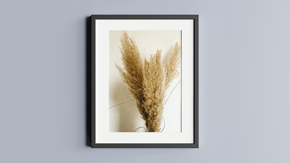 Pampas Grass Bunch (Digital)
