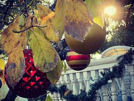 Happy Winter Solstice.