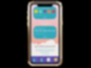iphone-xs-mockup-22485 (5).png