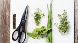 Usando ervas na cozinha