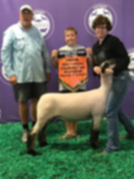 2018_Michigan_Livestock_expo.jpg