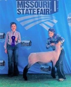 Champion Natural Market Lamb