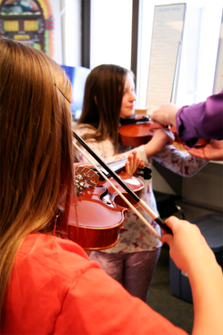 String Instrument Petting Zoo
