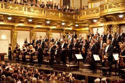 NZSO at Musikverein