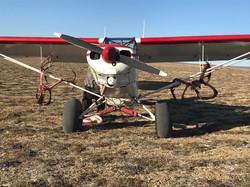 Fly In Reindeer Hunt Alaska