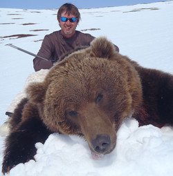 Arctic Grizzly Bear Hunt
