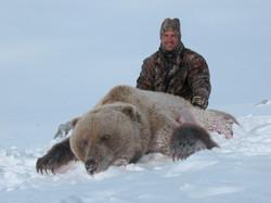 Silver Brown Bear Hunts Alaska