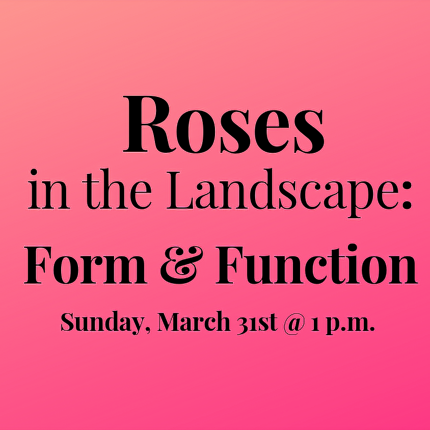 Roses in the Landscape: Form & Function