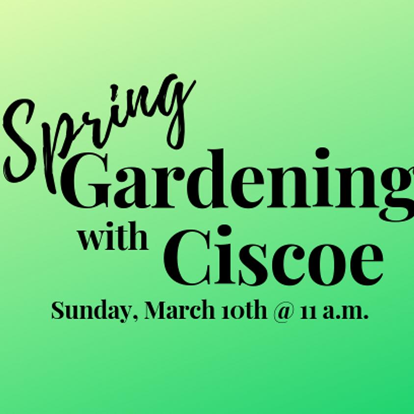 Spring Gardening with Ciscoe Morris