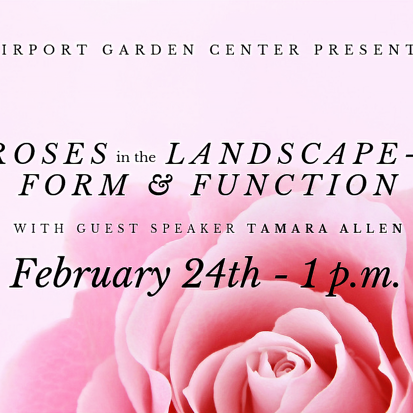 Roses in the Landscape- Form & Function