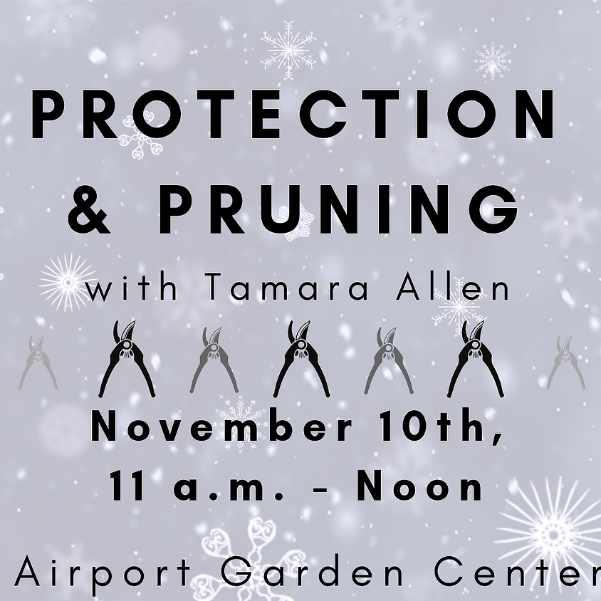 Protection & Pruning