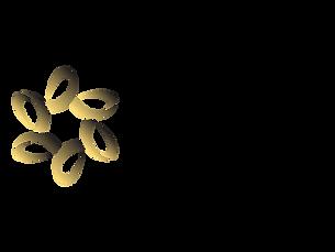 fina-logo.png