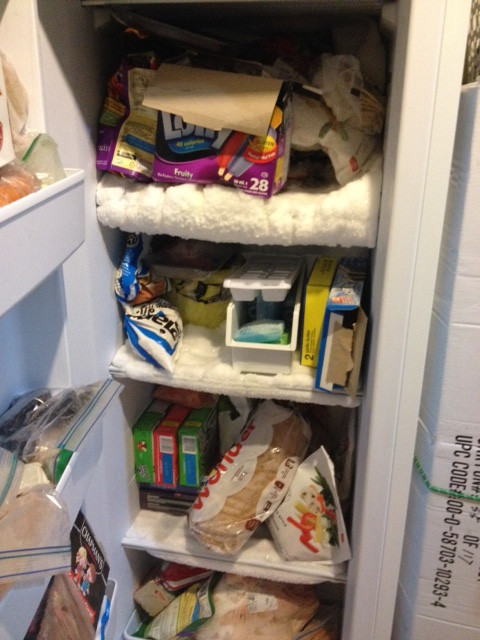 DEEP FREEZER (The Before)