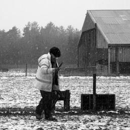 Giulio, Winter Work, Southton.JPG