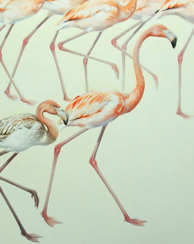 14. Flamingos-Square Watercolour 73 x 73