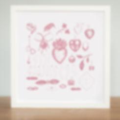 charm pink print web.jpg