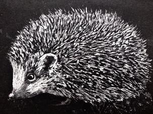 Hedgehog Sheila Roberts - Copy.jpg