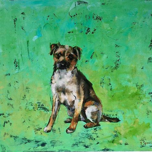 Giclee Print Border Terrier