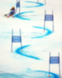 panel slalom.jpg