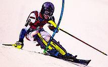 slalom cart 1_edited.jpg