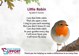 Robin-postcard-2-web.jpg