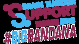 Big Bandana  header2018.png