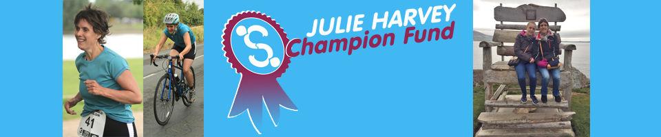 Short Banner Julie Harvey_blue_03-17.jpg