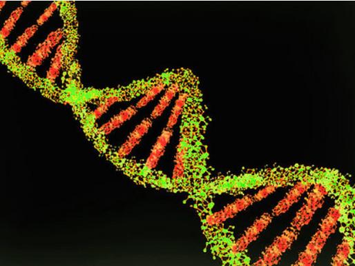 Inequity in Human-Genomics Research Leads to Health Disparities