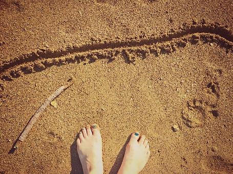 feet-768x576.jpg