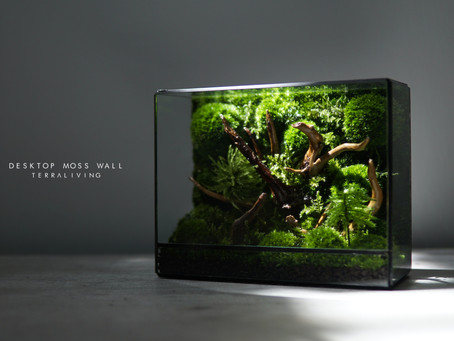 This moss wall is the perfect desktop accessory for your modern minimalist space.
