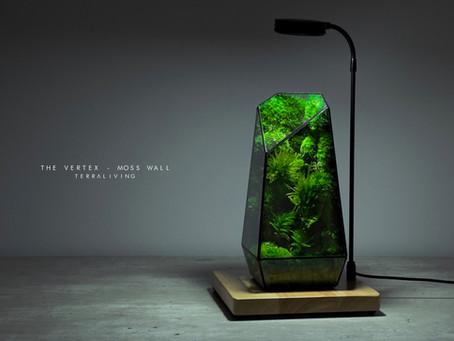 The Vertex  - Moss Wall, TerraLiving's Signature Preserved Moss Terrarium, ZERO Moss Collection