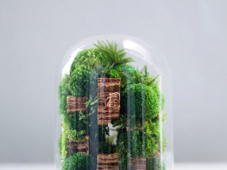 The Colony - M, Botanical Sculpture, Preserved Moss Terrarium by TerraLiving