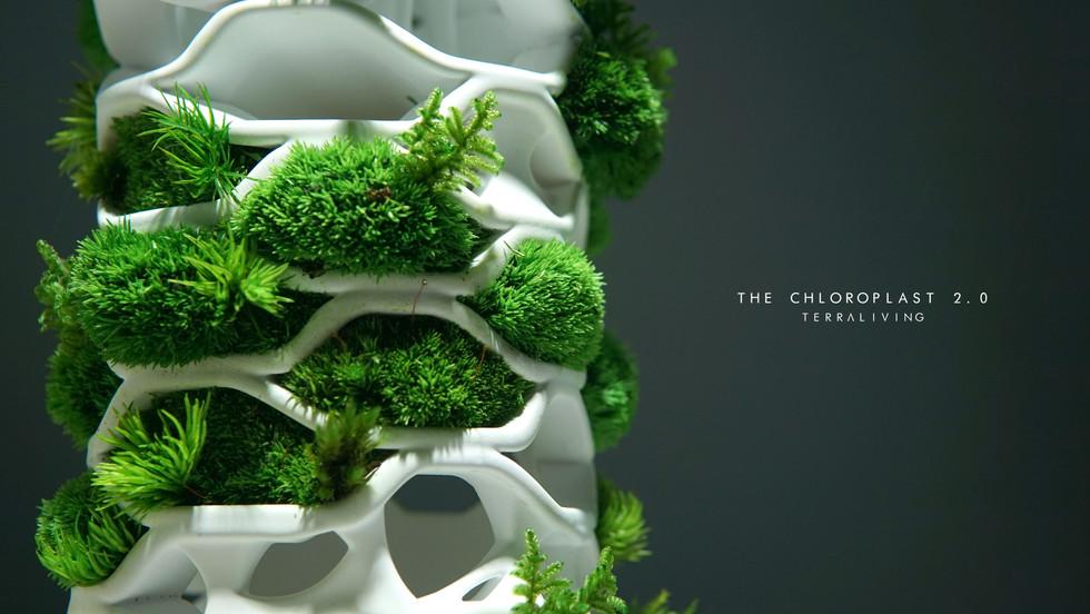 the-chloroplast-2.0_15.jpg